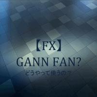 【FX】ギャンファンの使い方