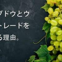 梨とブドウとウニとトレードを教える理由。