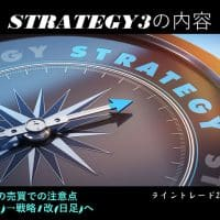 strategy3